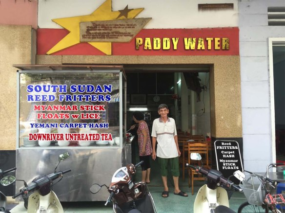 paddy-water