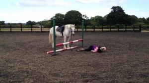 horse-accident